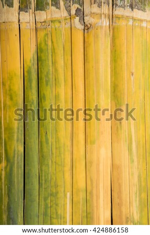 bamboo for background - stock photo