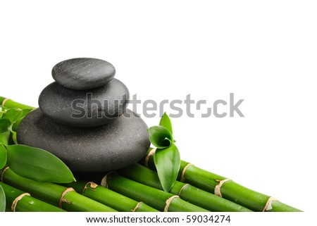 Bamboo grove and zen stones on the white background - stock photo