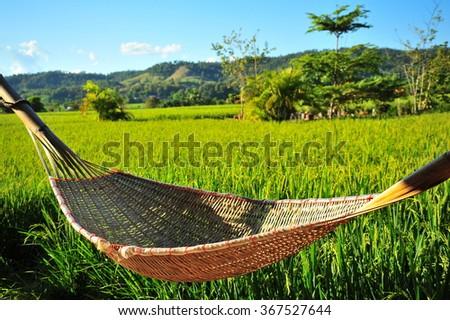 Bamboo Hammock in The Rice Field - stock photo