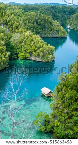 Bamboo Hut in Mangrove near Warikaf Homestay, Kabui Bay and Passage. Gam Island, West Papuan, Raja Ampat, Indonesia