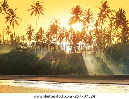 Bamboo huts on tropical island - stock photo