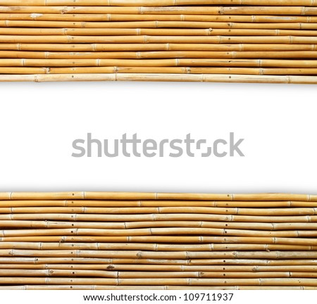 bamboo isolated on white background (Save Paths For design work)