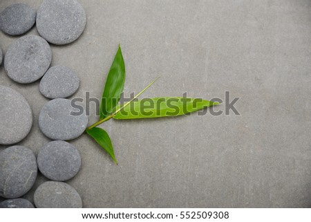 bamboo leaves on pile of gray stones-gray