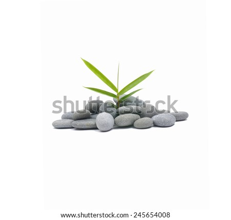 Bamboo leaves with natural piles of pebbles - stock photo