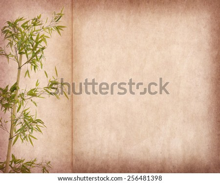 bamboo on old paper background - stock photo