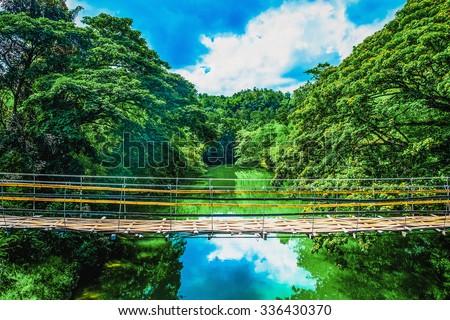 Bamboo pedestrian suspension bridge over river in jungle, Bohol, Philippines - stock photo