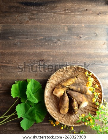 Bamboo shoots,butterbur and Japanese kerria. Image of edible wild plants of Japan on spring season. - stock photo