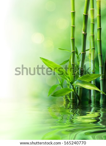 bamboo stalks on water - blurs  - stock photo