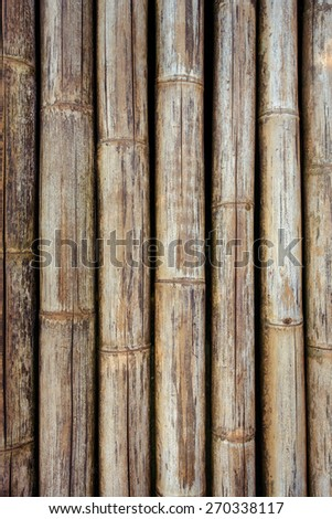 Bamboo sticks with a rope background