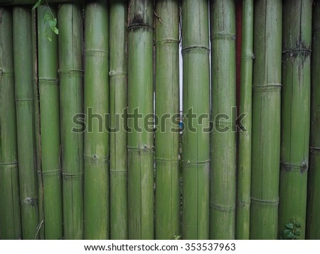 bamboo textures backgrounds