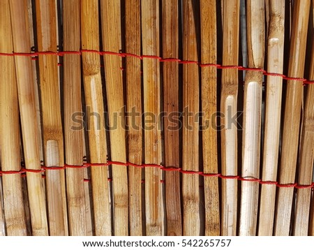 Bamboo tied together by red plastic ropes