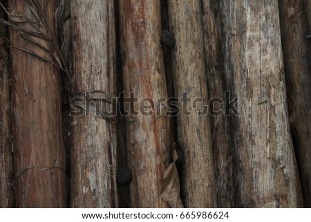Bamboo wall texture background. wooden texture