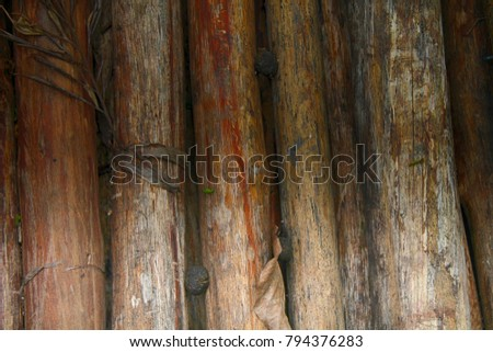 Bamboo wall texture background. wooden texture for web site or mobile devices