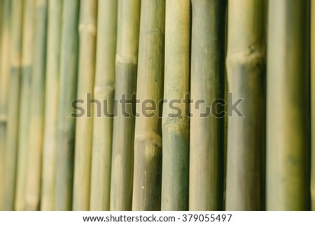bamboo wood for background