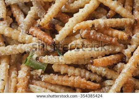 Bamboo worms - stock photo