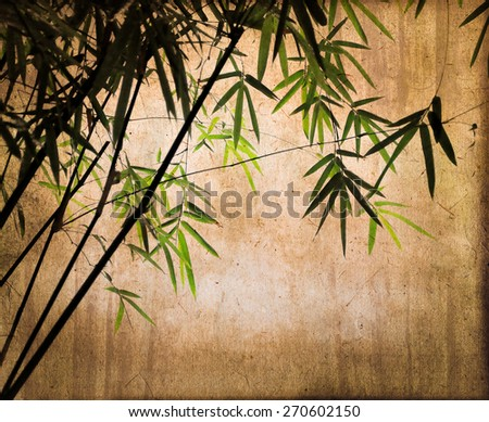 Bamboos on vintage textured sepia background
