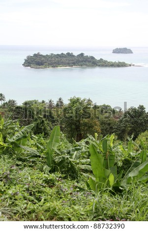 Bananas, green trees and tropical island on Ko Chang island, Thailand - stock photo