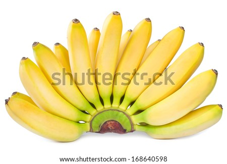 bananas isolated on white background - stock photo