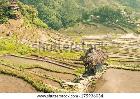 Banaue Rice Terraces - Batad Village - stock photo