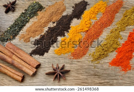 bands of colorful spices with anise and cinamon - stock photo