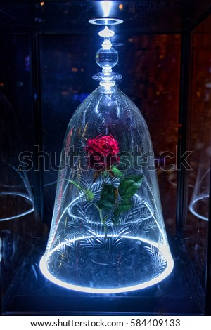 Beauty And The Beast Stock Images Royalty Free Vectors
