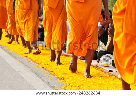 BANGKOK,THAILAND-JAN 26 : Row of Buddhist hike Thai monks on streets strewn with flower petals on the Thammachai hike establish the path of the great teachers on January 26,2015 in Bangkok , Thailand. - stock photo