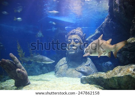 BANGKOK, THAILAND - JANUARY 01, 2015: Thai traditional giant with many sharks in the water at Siam Ocean world Aquarium in Siam Paragon, one of the biggest shopping centres in Asia. - stock photo