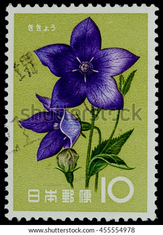 """BANGKOK, THAILAND - JULY 18, 2016: A postage stamp printed in Japan shows chinese bellflower plant, series """"Flower"""", circa 1961. - stock photo"""