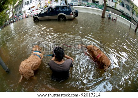 BANGKOK, THAILAND - OCTOBER 31 : unidentified People and dogs running ...
