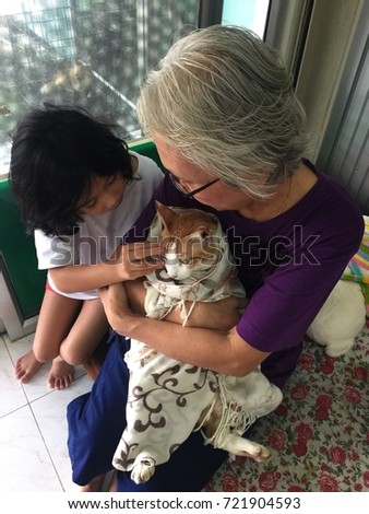 BANGKOK, THAILAND - SEPTEMBER 22, 2017: An old lady wraps a fat cat in a towel like a baby and lovingly holds him in her arm, while a kid with curly black hair is very interested in a cat.
