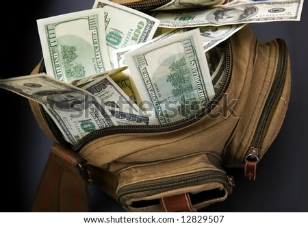 Bank of american dollars in opening bag - stock photo