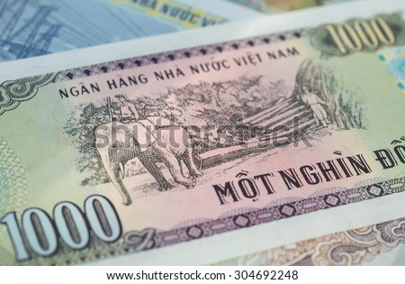 Banknote in one thousand Vietnamese dong close up