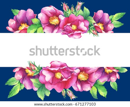 Banner With Flowering Pink Roses Names Dog Rose Rosa Canina Japanese