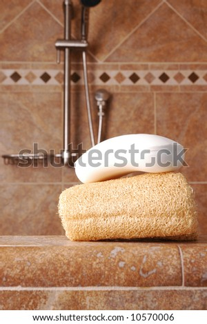 Bar of Soap on Loofah in Modern Shower