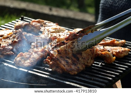 barbecue barbeque picnic BBQ meat pig pork chicken beef veal sausages grilled  - stock photo