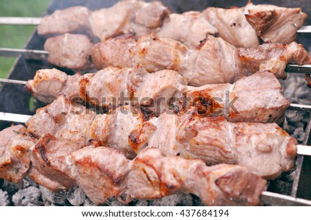 Barbecue Beef Kebabs On The Hot Grill In Nature Outdoor - stock photo