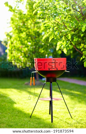 barbecue grill on backyard party