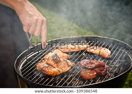 barbecue in the garden - stock photo