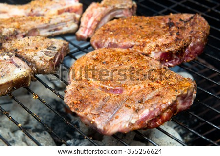 Barbecue in the South African style - braai. - stock photo