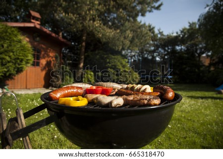 Barbecue on a countryside