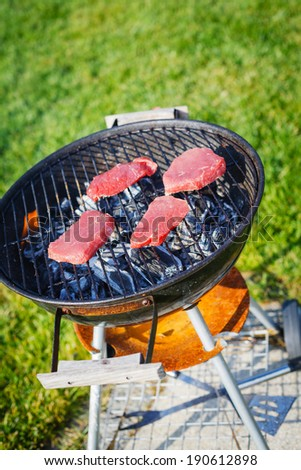 Barbecue on a hot day during the summer vacation on a green grass background. Meat on the grill. - stock photo