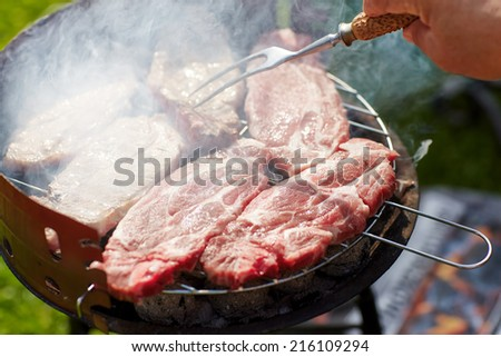 Barbecue steak on the grill at summer