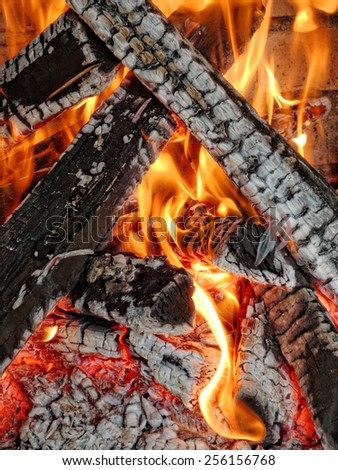 barbecue wood fire - stock photo