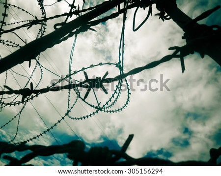 Barbed wire A - stock photo