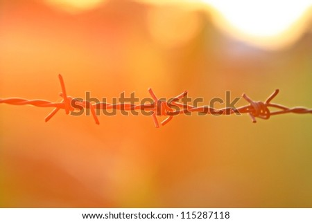 Barbed wire at sunset. - stock photo