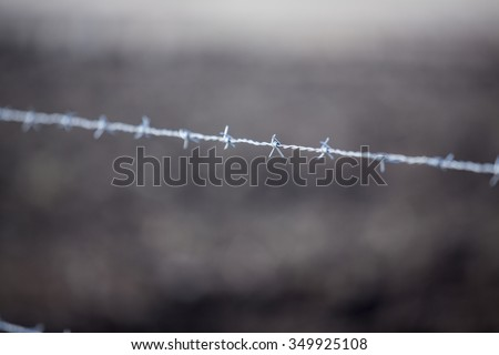 barbed-wire entanglement 	  - stock photo
