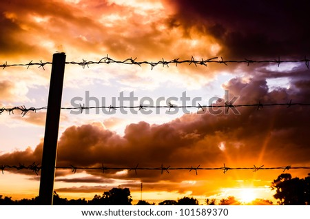 Barbed wire fence and the sun in farmland - stock photo