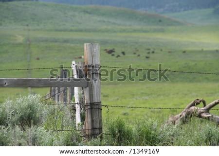 Barbed Wire Fence around pasture - Wyoming - stock photo