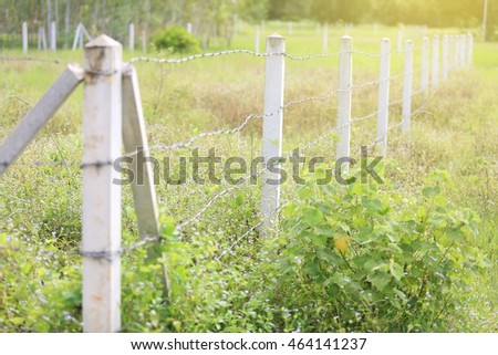 Barbed wire fence Central Plains