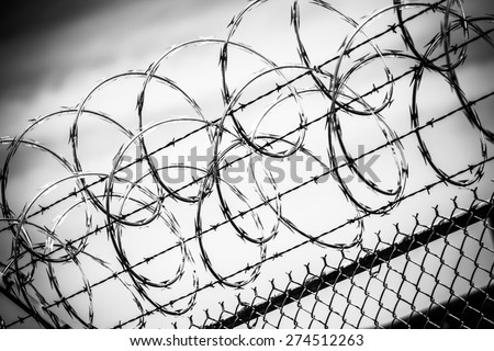 Prison Fence Graphic razor-wire stock images, royalty-free images & vectors | shutterstock